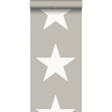 papier peint étoiles gris chaud