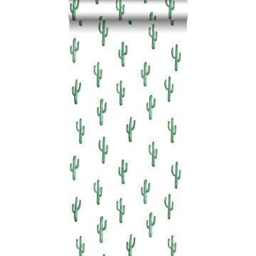 papier peint petit cactus du désert vert émeraude intense