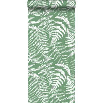 papier peint fougères vert