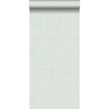 papier peint lin vert menthe pastel clair grisé