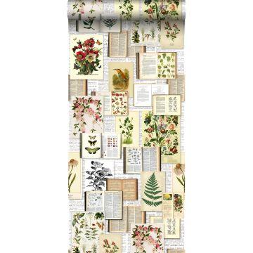 papier peint intissé XXL pages d'un livre botanique avec fleurs et plantes beige crème clair, vert, marron et jaune ocre