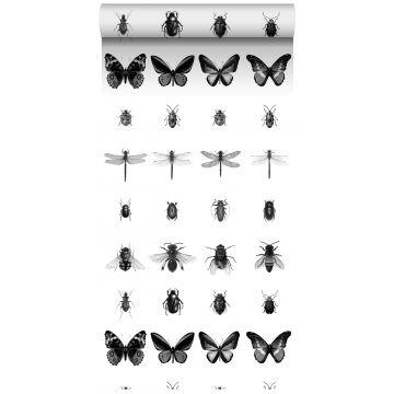 papier peint intissé XXL à motif d'insectes noir et blanc