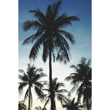 papier peint panoramique palmiers bleu, noir et beige