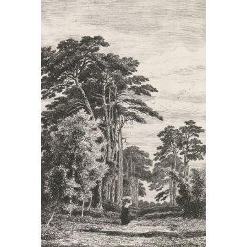 papier peint panoramique paysage boisé noir et blanc