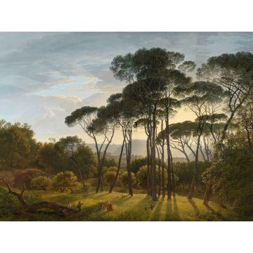 papier peint panoramique paysage italien vert foncé