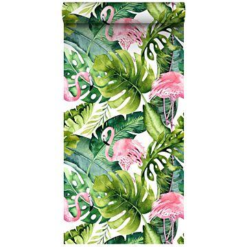 papier peint intissé XXL feuilles tropicales avec des flamants roses vert et rose