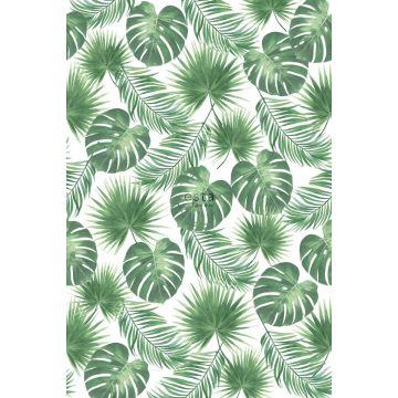 papier peint panoramique feuilles tropicales vert