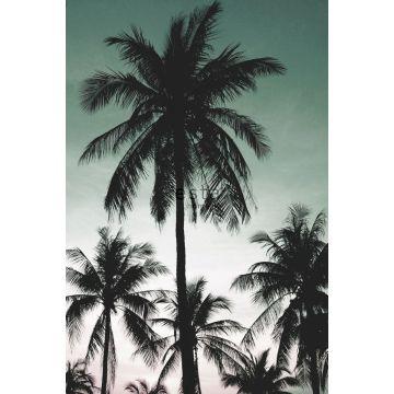papier peint panoramique palmiers vert pétrole