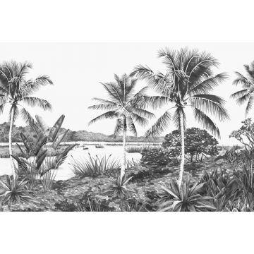 papier peint panoramique paysage tropical avec des palmiers noir et blanc