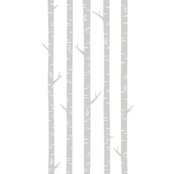 papier peint panoramique troncs de bouleau gris