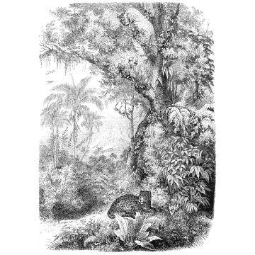 papier peint panoramique jungle noir et blanc