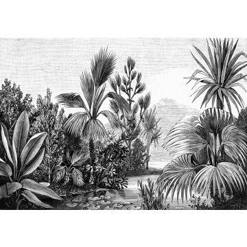 papier peint panoramique paysage tropical noir et blanc