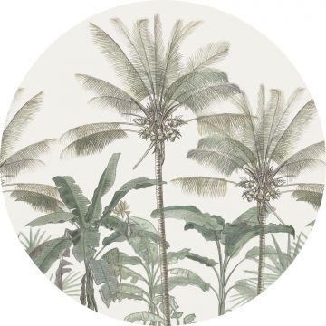 papier peint panoramique rond adhésif palmiers beige clair et vert grisé