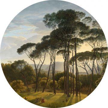 papier peint panoramique rond adhésif paysage italien vert foncé