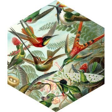 sticker mural oiseaux vert jungle tropicale