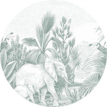 papier peint panoramique rond adhésif jungle vert