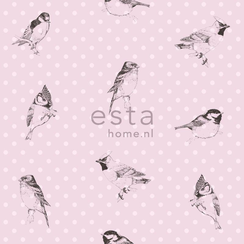 papier peint oiseaux rose clair