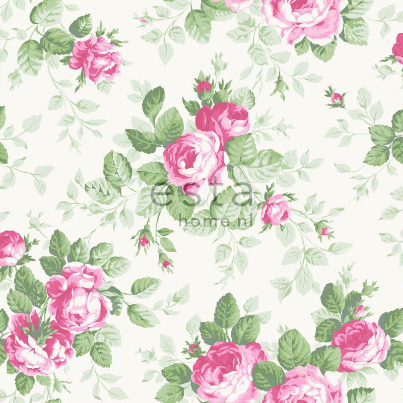 papier peint roses rose